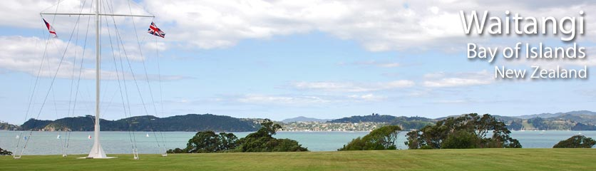 Links to other websites with information about the Bay of Islands